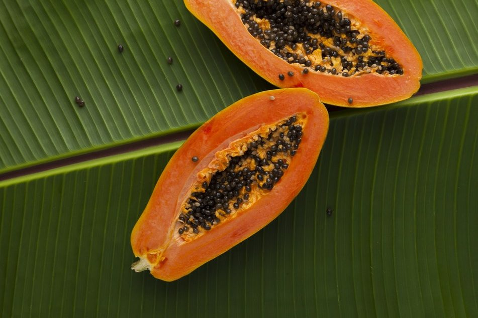 papaya on leaves